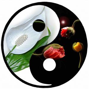 Les exercices spirituels, une opportunité pour accélérer  le changement
